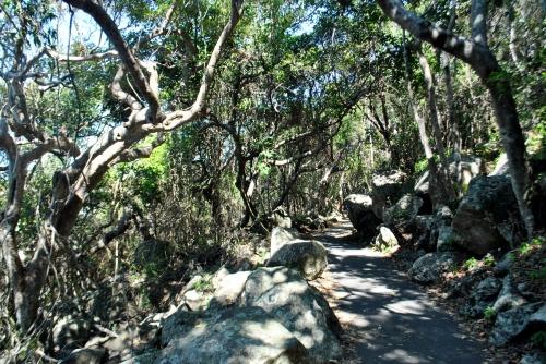 ocean-side hike